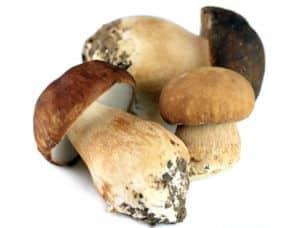 porcini-mushroom-oil
