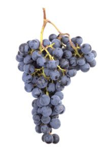 Red Wine Vinegar (Barrel Aged)