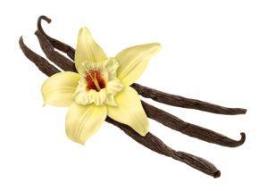 Vanilla Balsamic Condimento