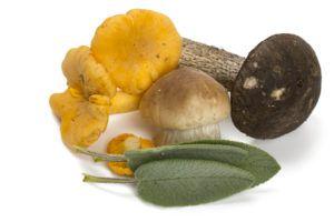 Wild Mushroom & Sage Infused Olive Oil
