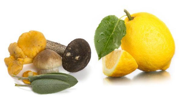 Mushroom Sage Lemon Balsamic